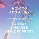 How To Add A Link To Text and Images In WordPress